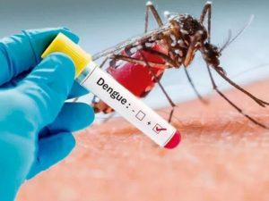 В России начнут распространяться экзотические болезни – эксперт