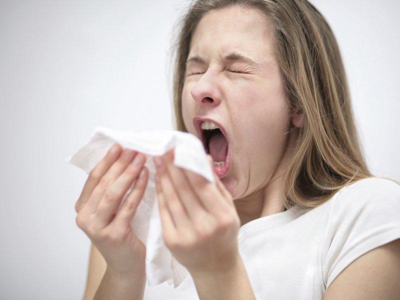 В петербургский больницах стартовал сезон гриппа — регистрируются случаи обычного (H3N2) и свиного (H1N1)