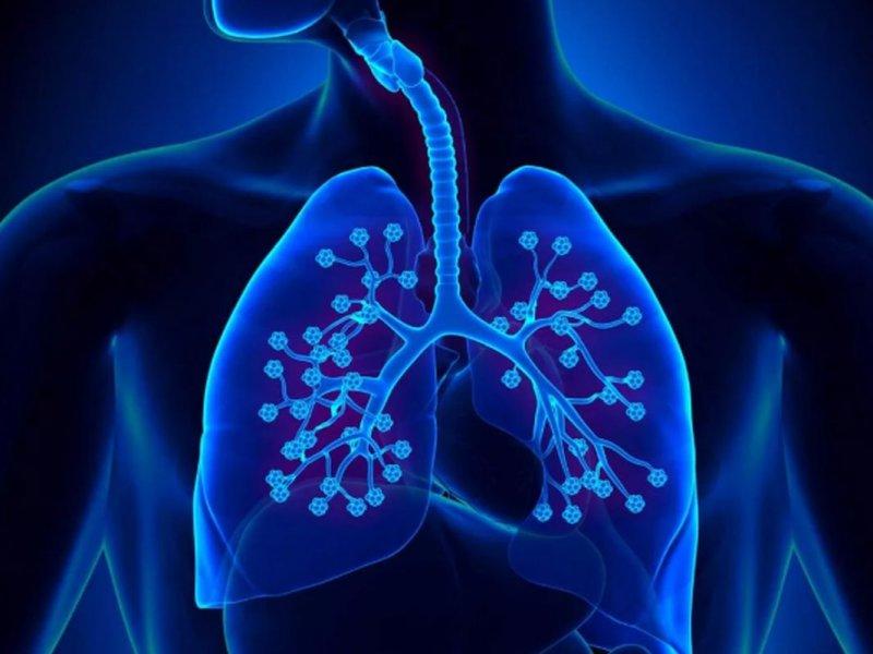 Вспышка неизвестной вирусной пневмонии в Китае: что важно знать об этом заболевании?