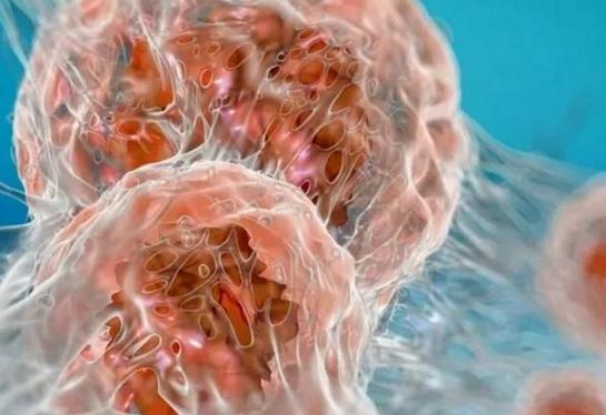 Опасный тропический вирус обратили против рака мозга