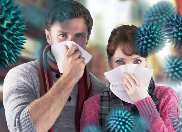 Профилактические бутерброды повысят иммунитет и сопротивляемость гриппу