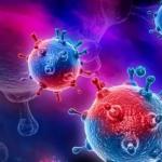 Коронавирус заподозрили в способности ускорять нейродегенеративные заболевания мозга