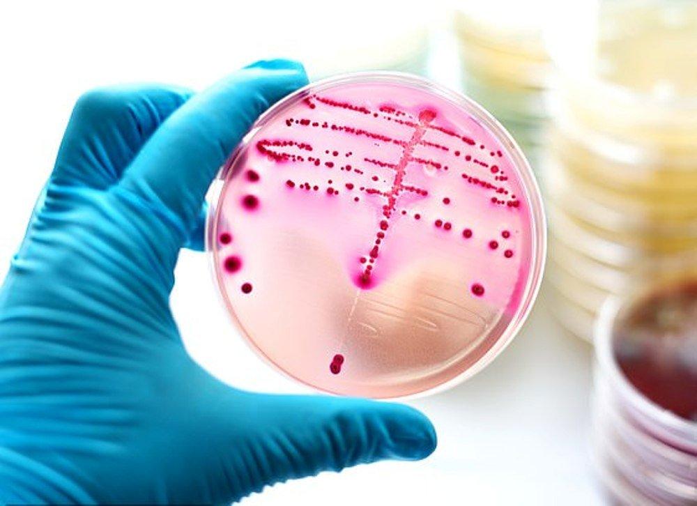 Супермикробы убьют больше пациентов, чем коронавирус