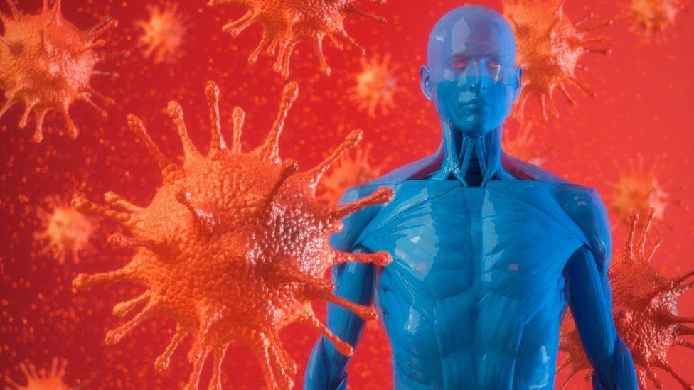 Коронавирус повреждает эндокринную систему