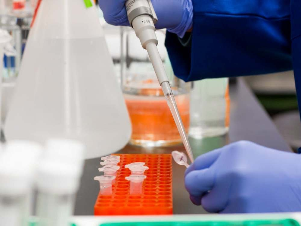 Найден новый способ лечения коронавируса