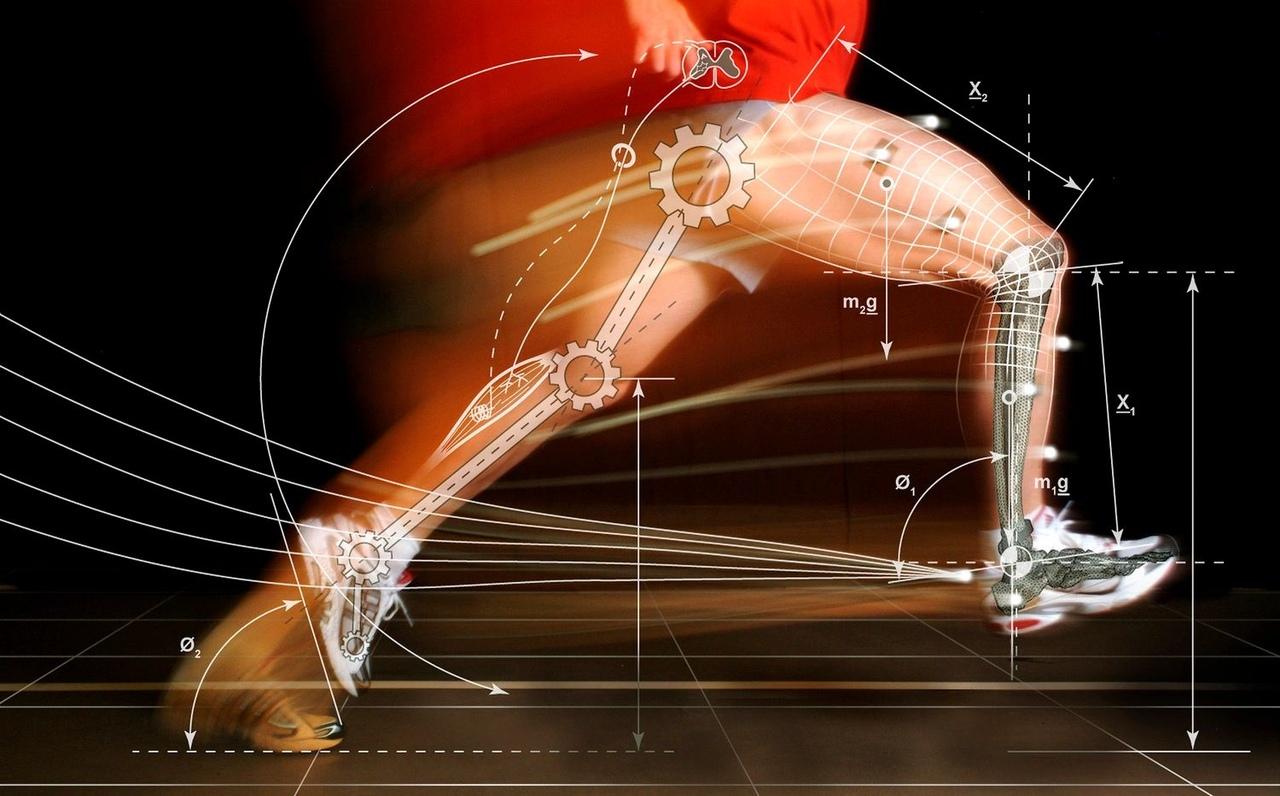 Роль биомеханики в жизни современного человека