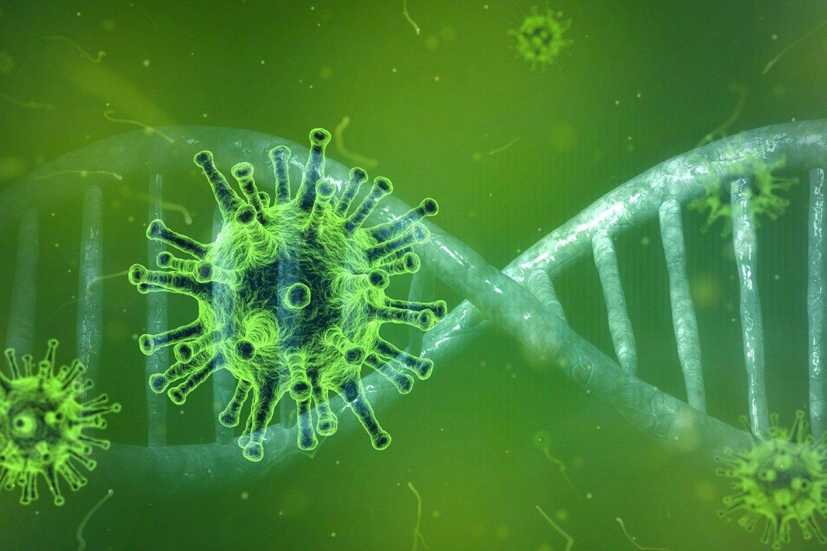 Ученые нашли способ уничтожить самый стабильный участок генома коронавируса